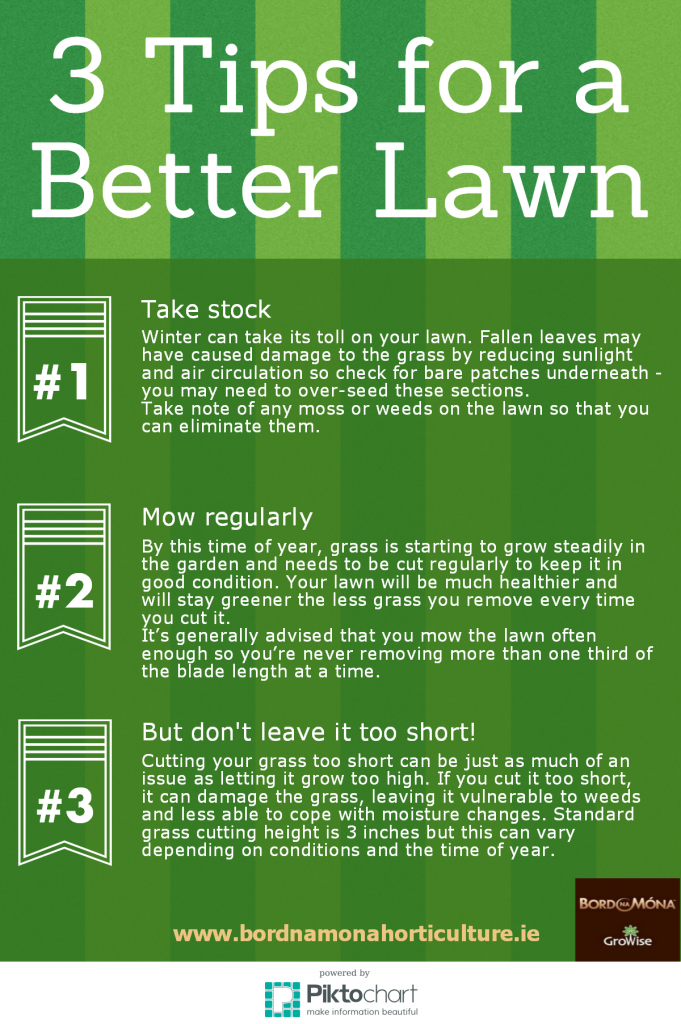 3 Tips for a Better Lawn infographic